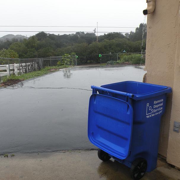 recycle bin collect rain