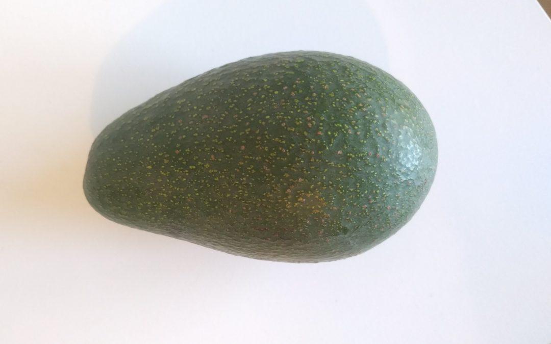 How the Fuerte avocado really got its name
