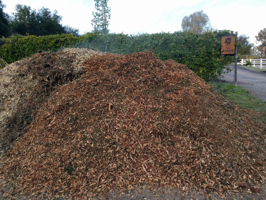 one steaming pile of wood chips, mulch for the fruit trees