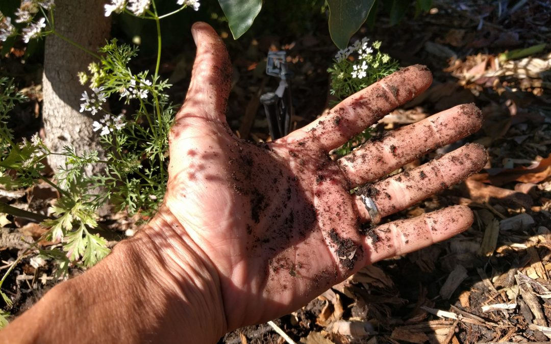 get hands dirty to discover truth about irrigation practices