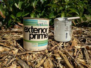 white latex paint for avocado sunburn prevention