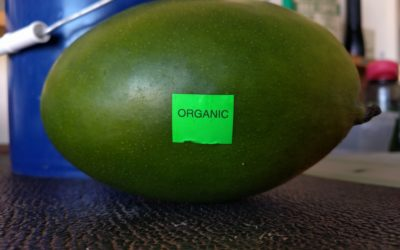 What is organic, actually?