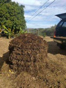 compost pile in wire tomato cage