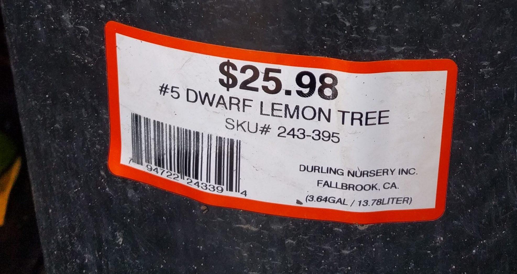 Where should you buy a fruit tree? - Greg Alder's Yard Posts