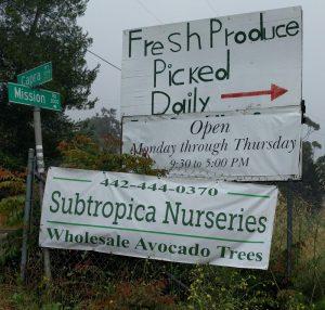 Subtropica Nurseries avocado trees