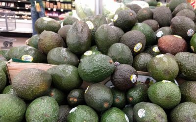 Where and how to buy good avocados