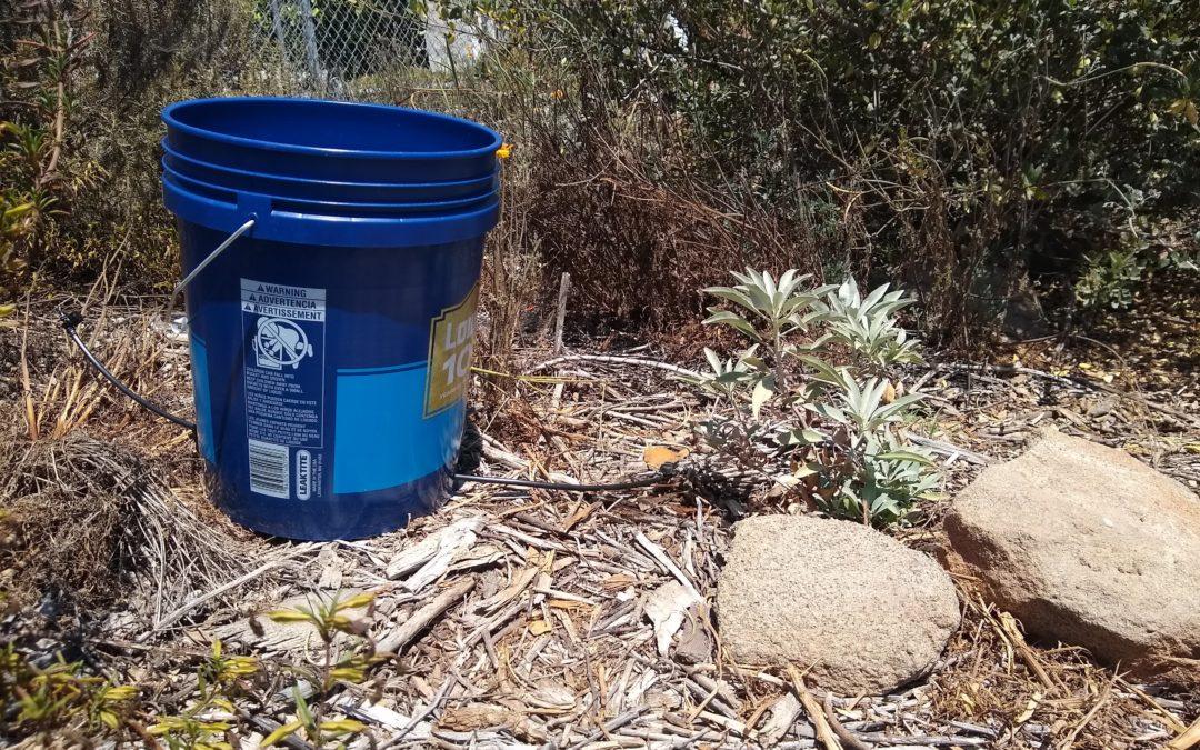 Drip-irrigation bucket
